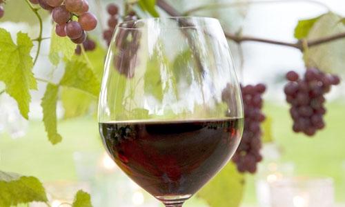 En novembre, c'est la fête du beaujolais nouveau. Petite histoire.