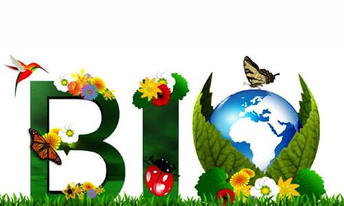 Les magasins de produits bio et écologiques