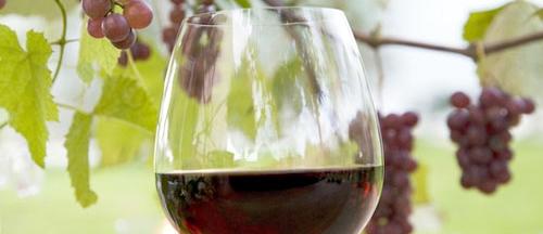 pourquoi fête-t-on le Beaujolais nouveau