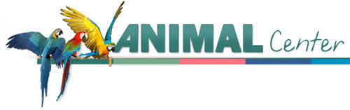 le magasin Animal Center