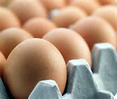 La guerre des supermarchés contre les oeufs de poules élevées en batterie