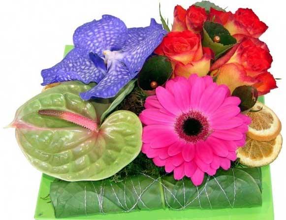 Trouver un magasin Carrément Fleurs
