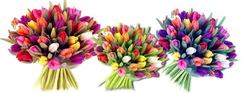 Les fleuristes
