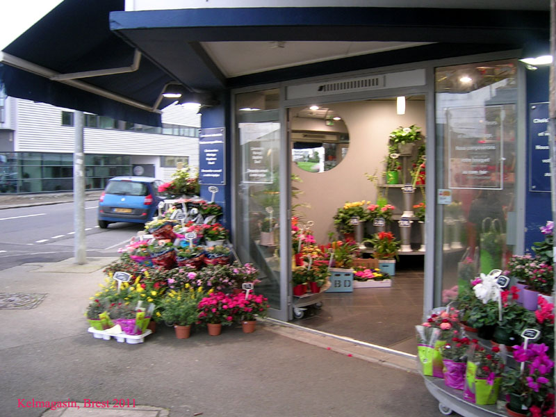Trouver un magasin Rapid'flore